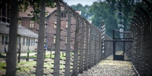 Na zdjeciu druty kolczaste Auschwitz. Ukazało się polsko-angielskie sprawozdanie podsumowujące rok 2019 w Miejscu Pamięci i Muzeum Auschwitz.