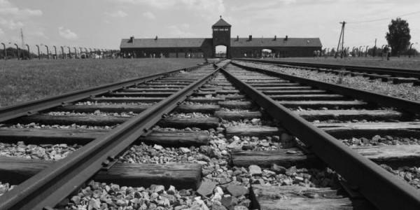 Auschwitz - tory