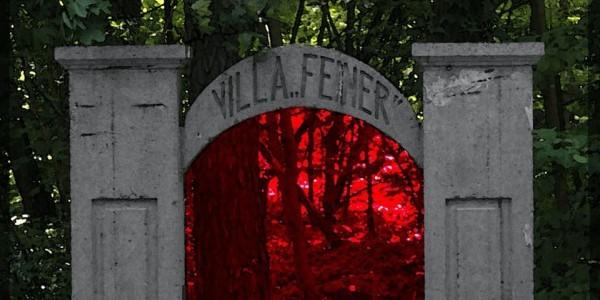 """Villa """"Feiner""""   -brama wiazdowa, logo obchodów"""