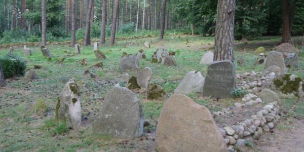 Cmentarz muzułmański w Kruszynianach (fot. Michał Karski)